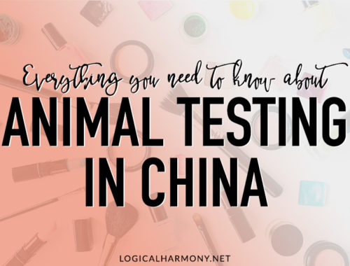 Everything You Need to Know about Animal Testing in China