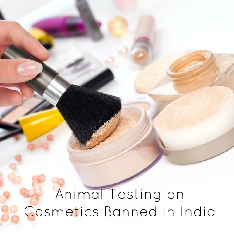 Animal Testing on Cosmetics Banned in India