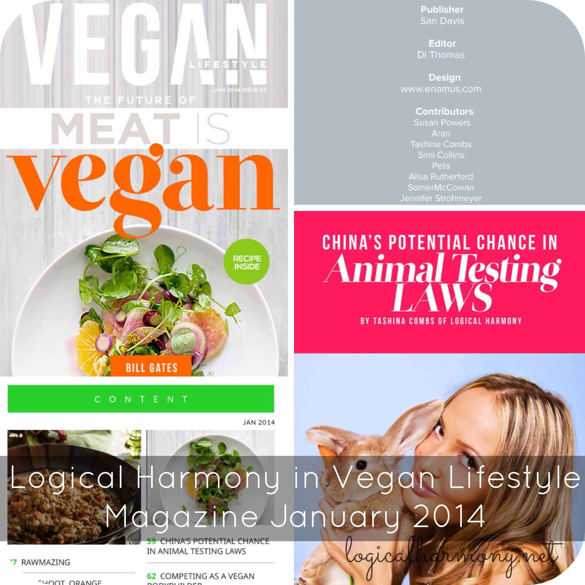 Logical Harmony in Vegan Lifestyle Magazine - January 2014