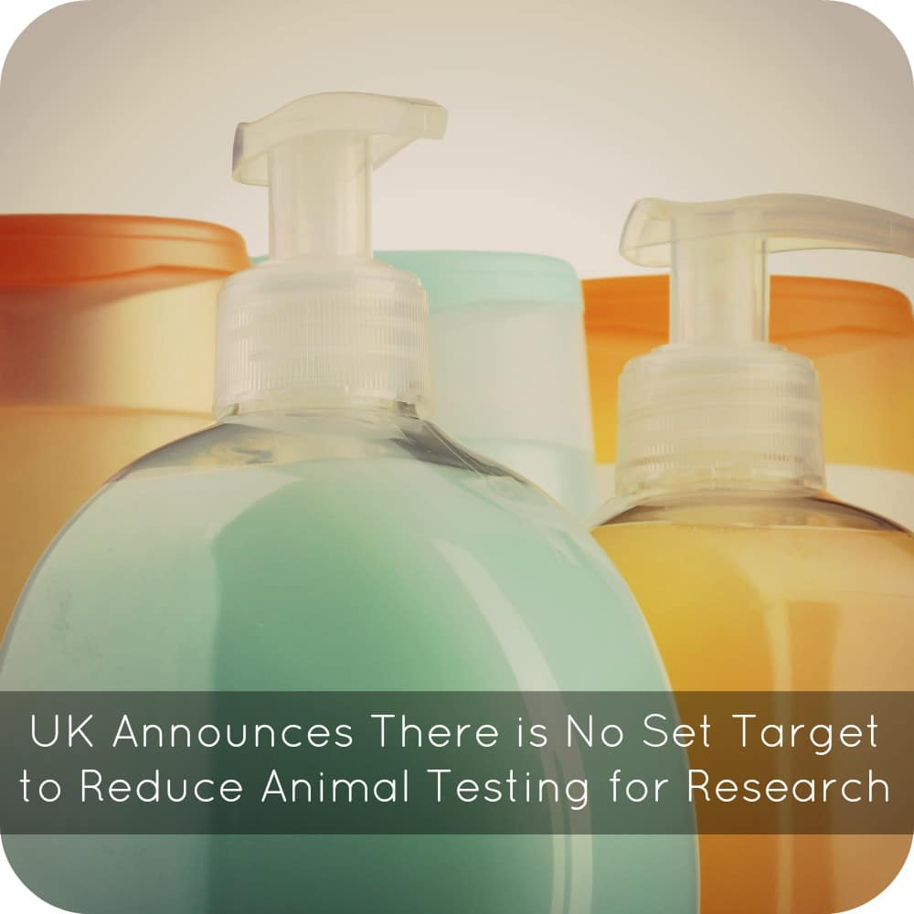 UK Announces There is No Set Target to Reduce Animal Testing for Research