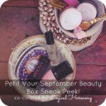 Petit Vour September Beauty Box Sneak Peek!