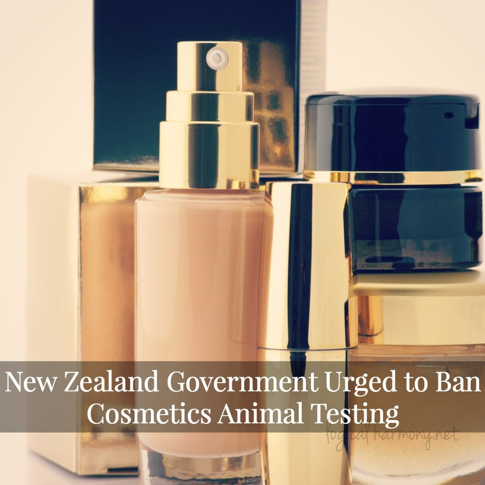 New Zealand Government Urged to Ban Cosmetics Animal Testing
