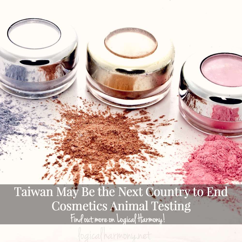 Taiwan May Be the Next Country to End Cosmetics Animal Testing