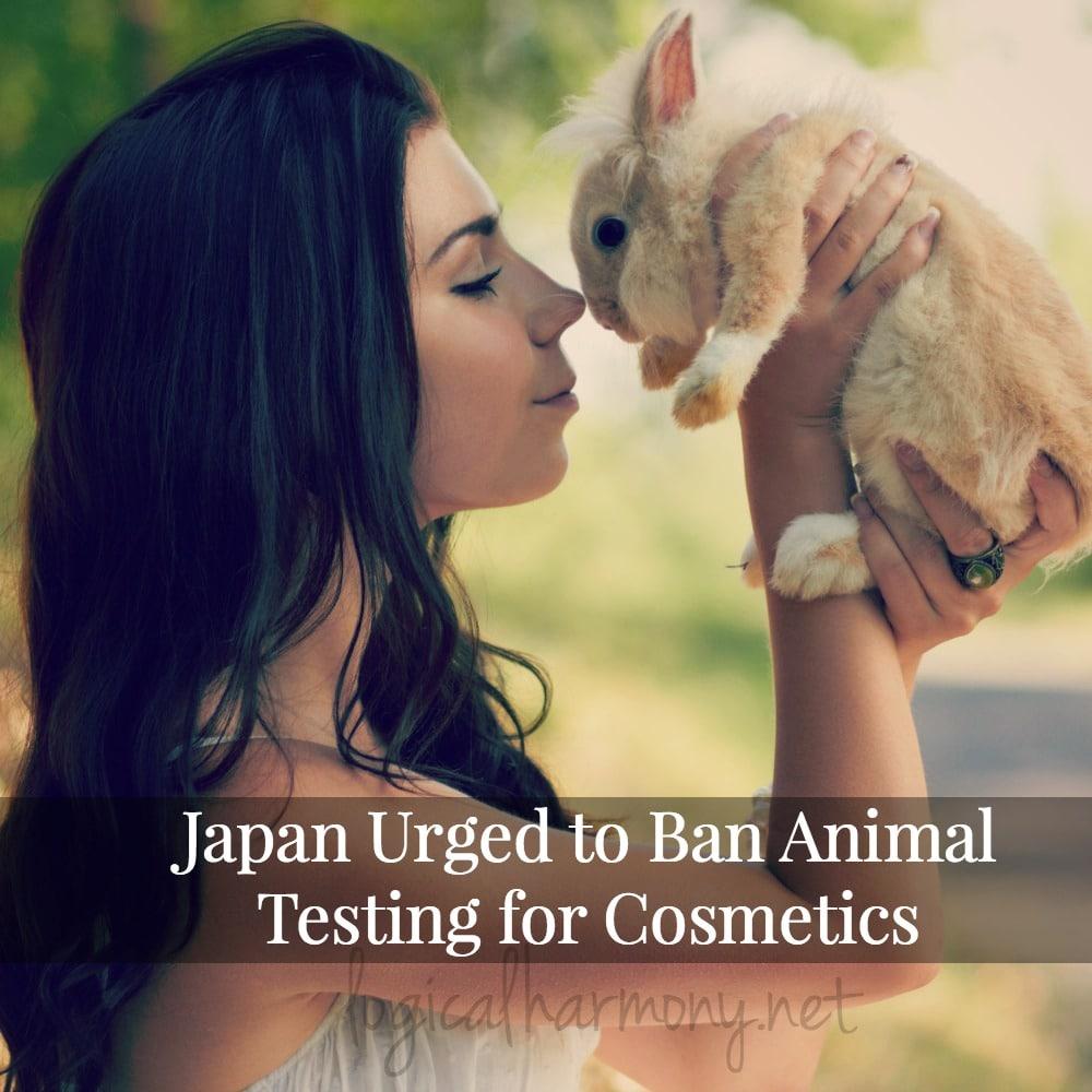 Japan Urged to Ban Animal Testing for Cosmetics