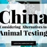 China Considering Alternatives to Animal Testing