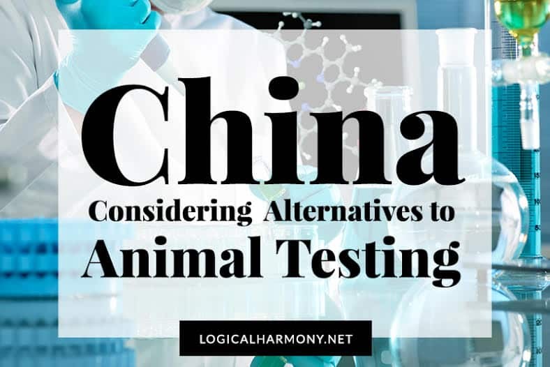 China Considering Alternatives to Animal Testing