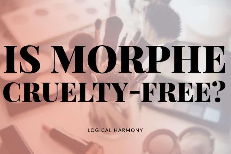 Is Morphe Cruelty-Free?